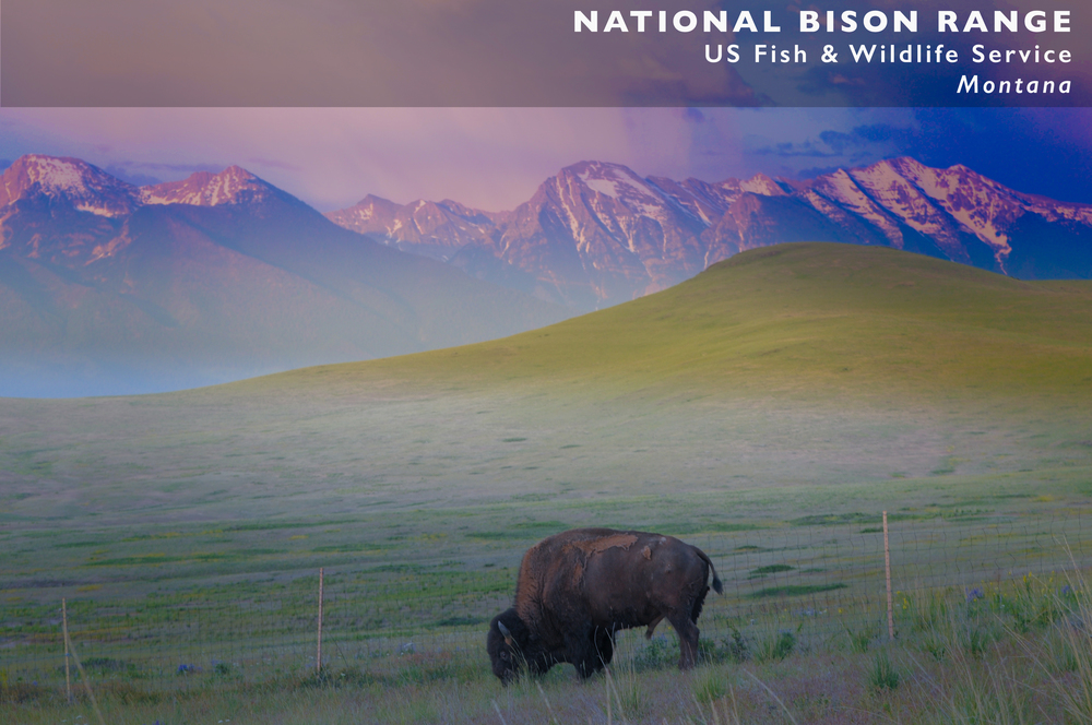 National Bison Range slide.jpg