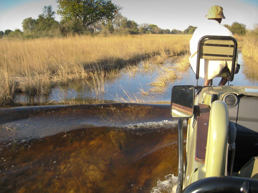 Okavango Delta-2206.jpg