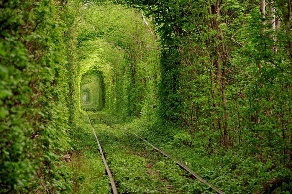 Tunnel of Love.jpg