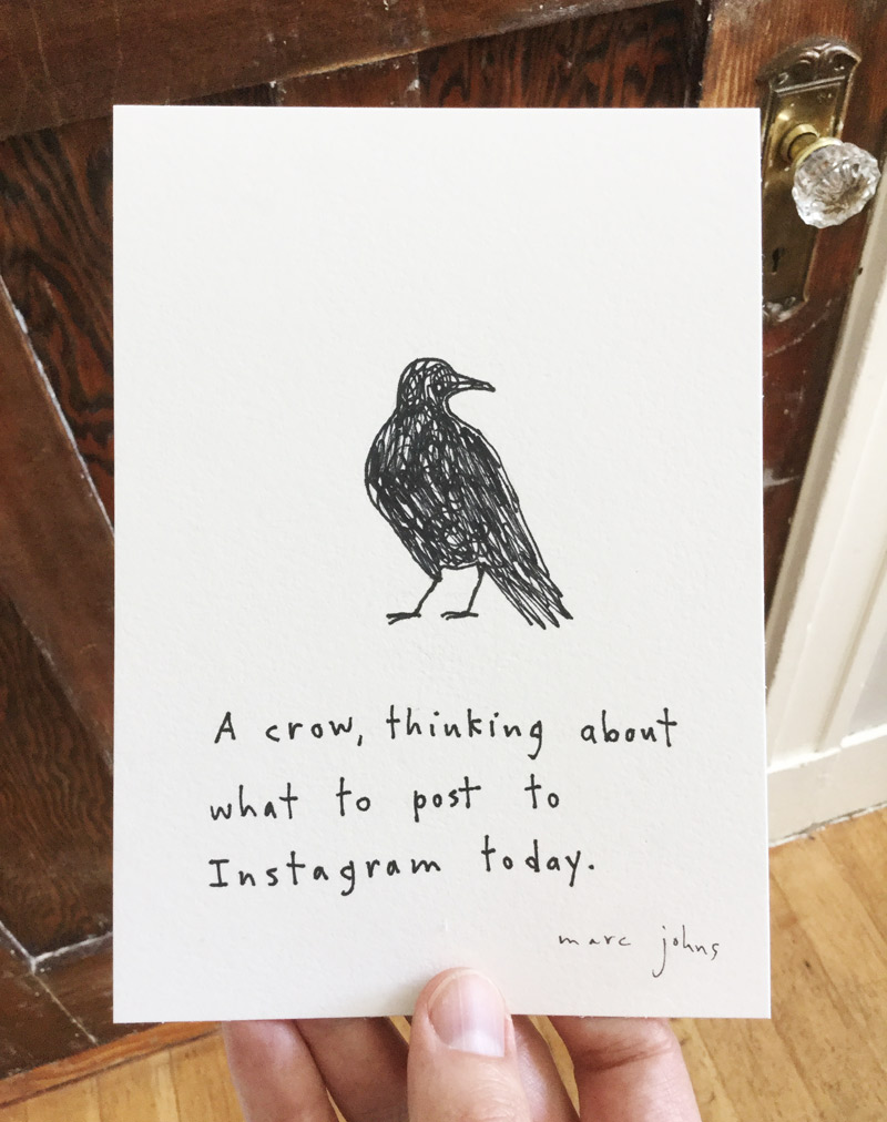 crow-post-instagram-photo-800.jpg