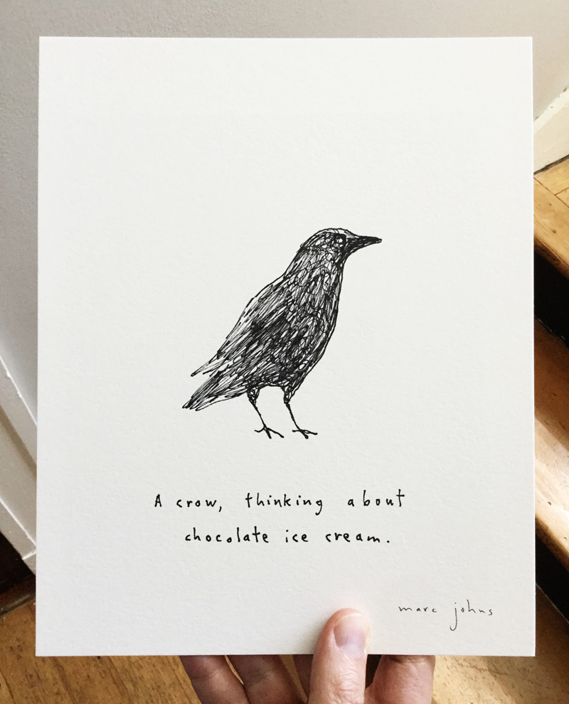 crow-thinking-about-ice-cream-photo-800.jpg