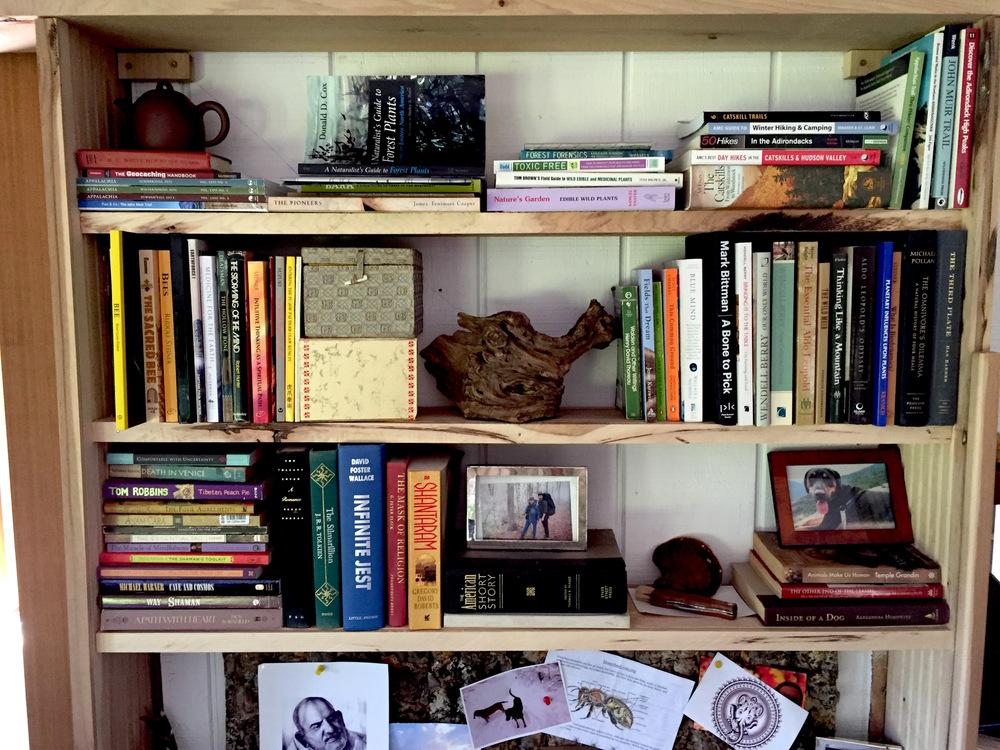 shelf 3.jpg