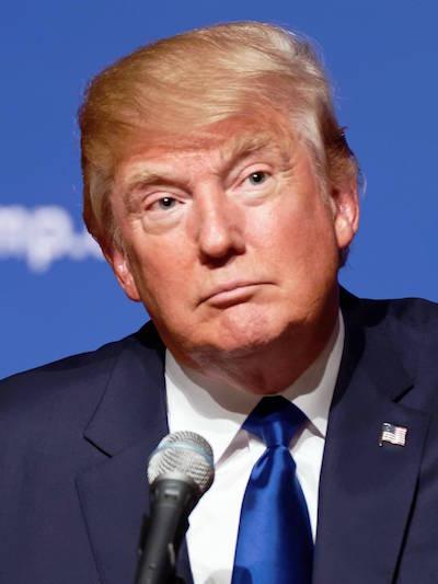 Donald Trump (Wikipedia)