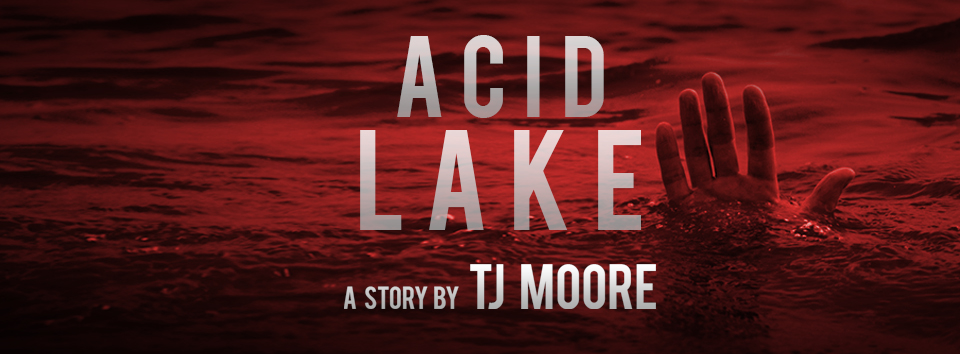 ACID LAKE_FB_Cover_2.jpg