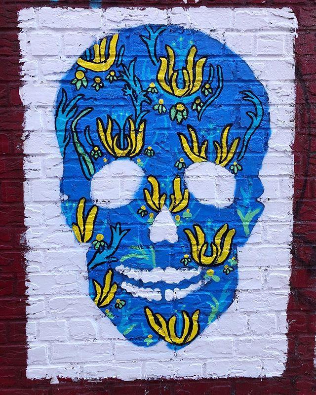 The new skulls at @esquinanyc up close and personal 💀 💐 . . . . . #skull #skulls #skullart #brooklyn #brooklynart #anndwilliams #brooklynartist #mural #streetart #brooklynart #brooklynstreetart