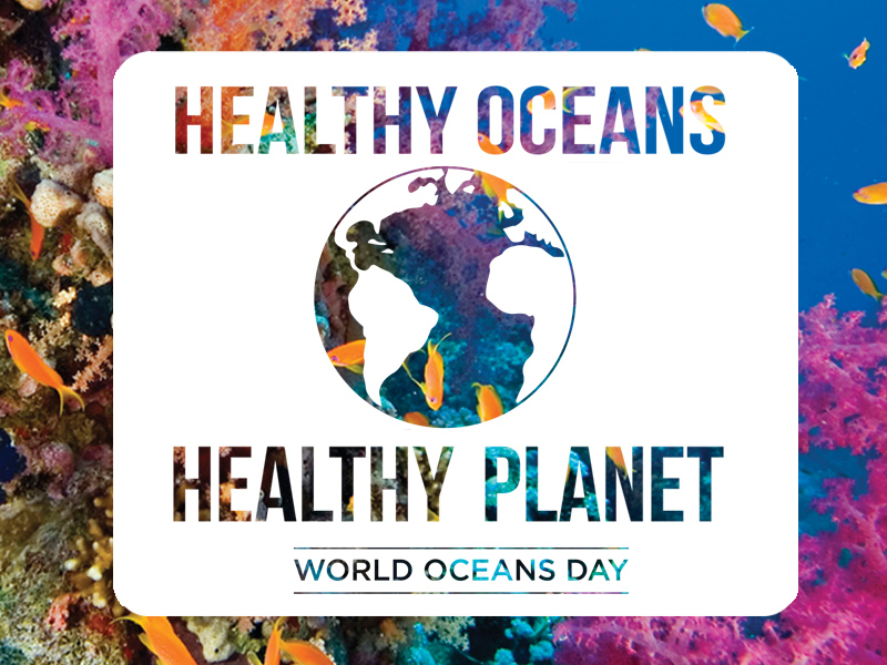 world oceans day.jpeg