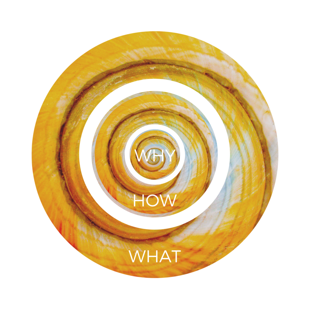 The WHY, HOW, & WHAT that make up the Golden Circle