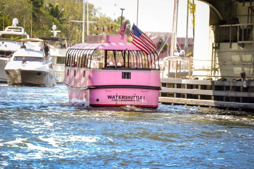 olapi-creative-blue-discovery-tour-pink-shuttle-2