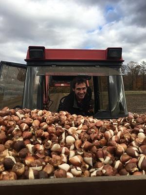 Jeroen planting bulbs Fall 2016
