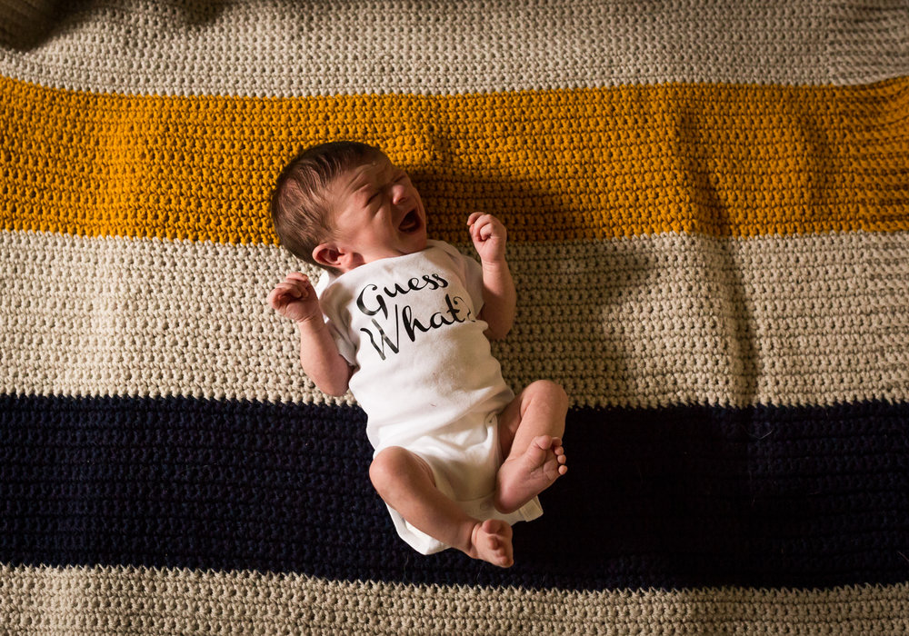 Moncton Newborn Photographer Tara Geldart (5).JPG