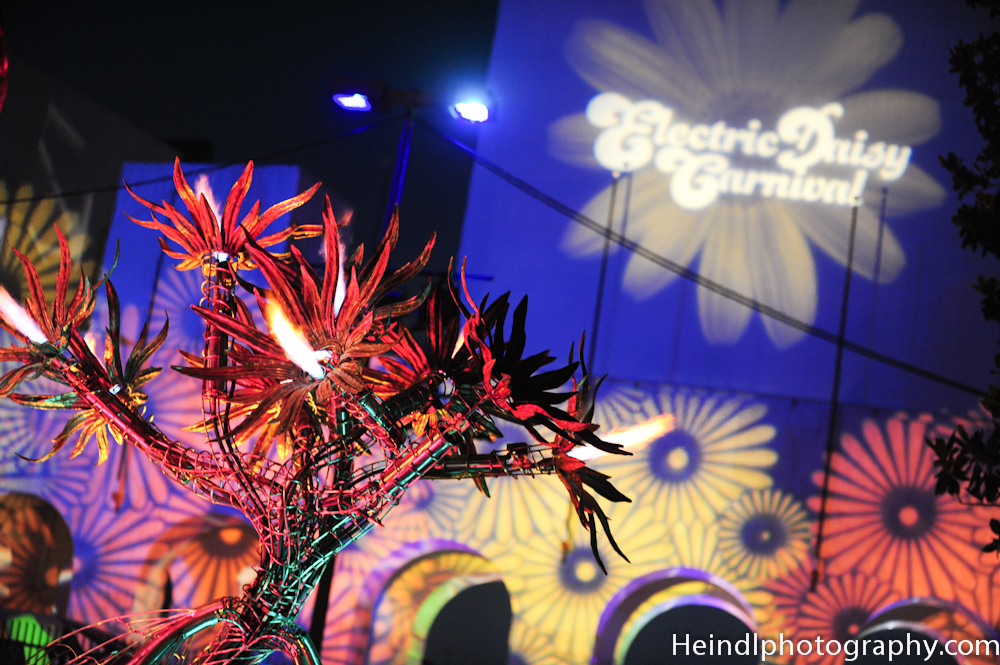 Charles Gadeken art | NOUS | interactive fire flower