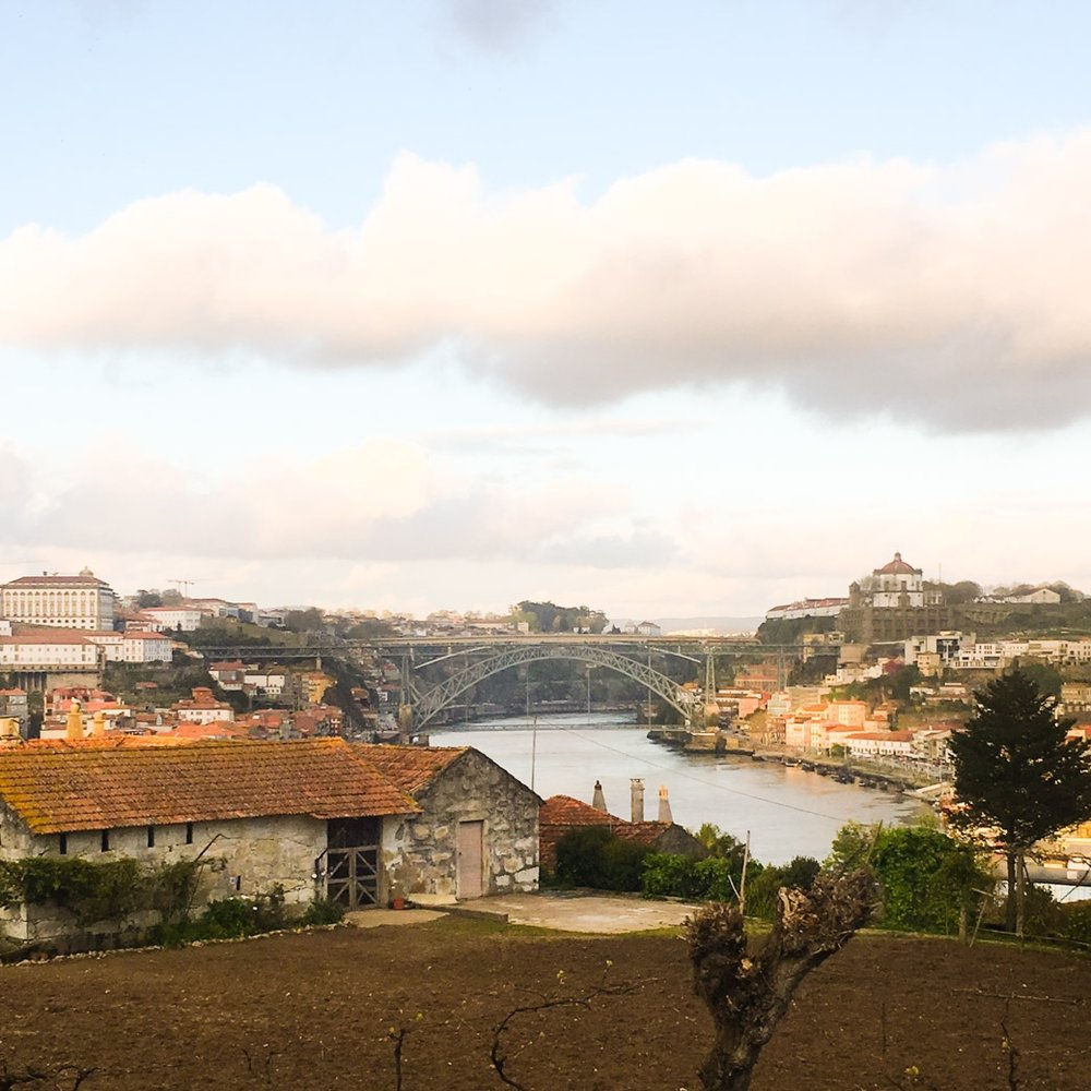 Portugal's second largest city is a town for small hotels and walks by the seaside. - travel: we suggest you have a look at porto