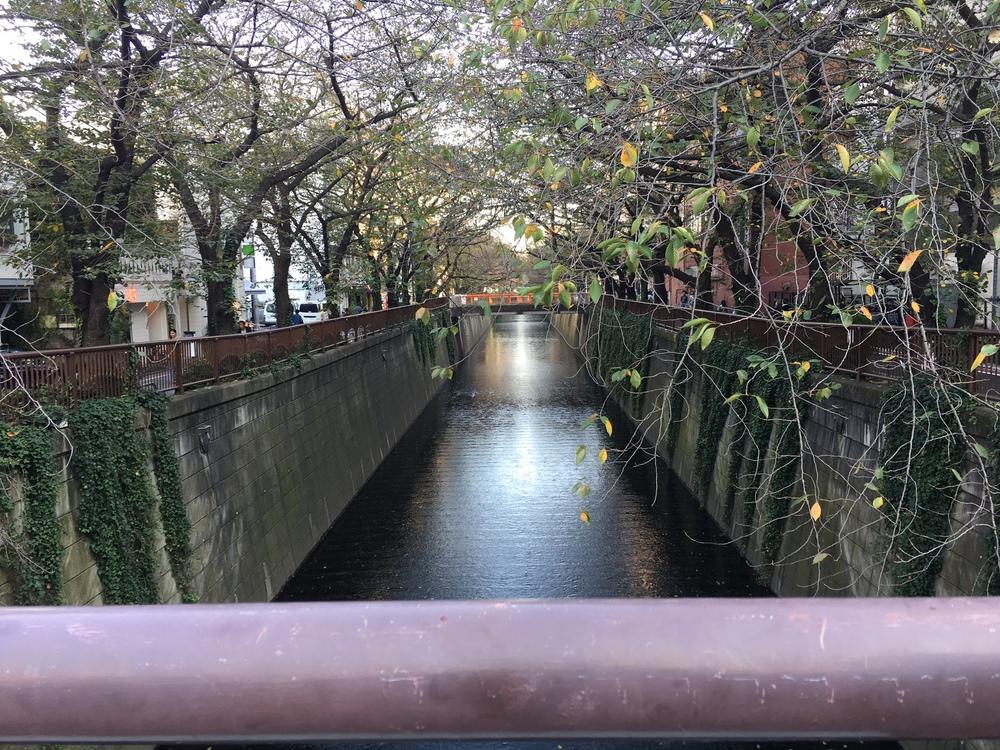 Canals of Naka-meguro