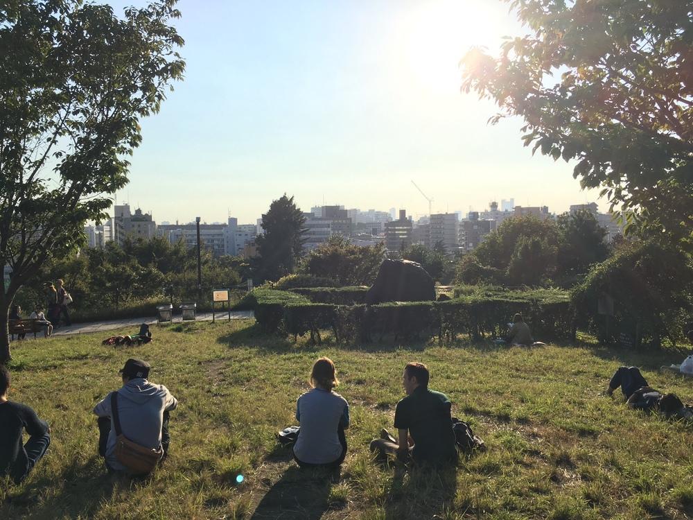 picnic park (self-named)