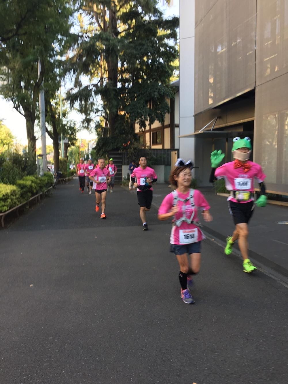 Tokyo marathon in costume