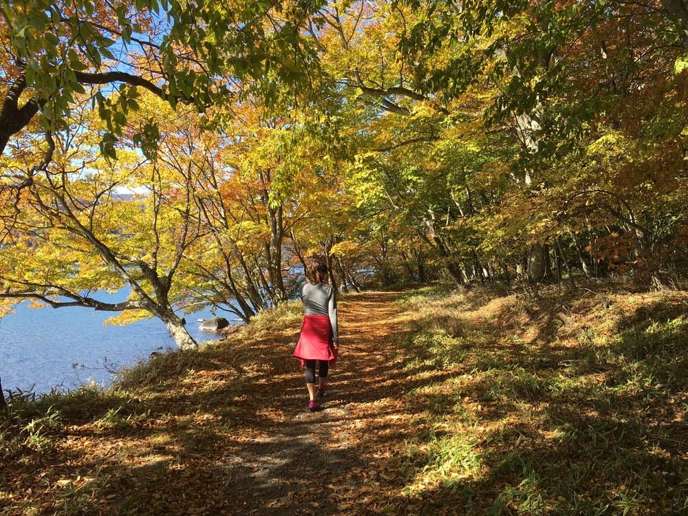 Strolling along the lake