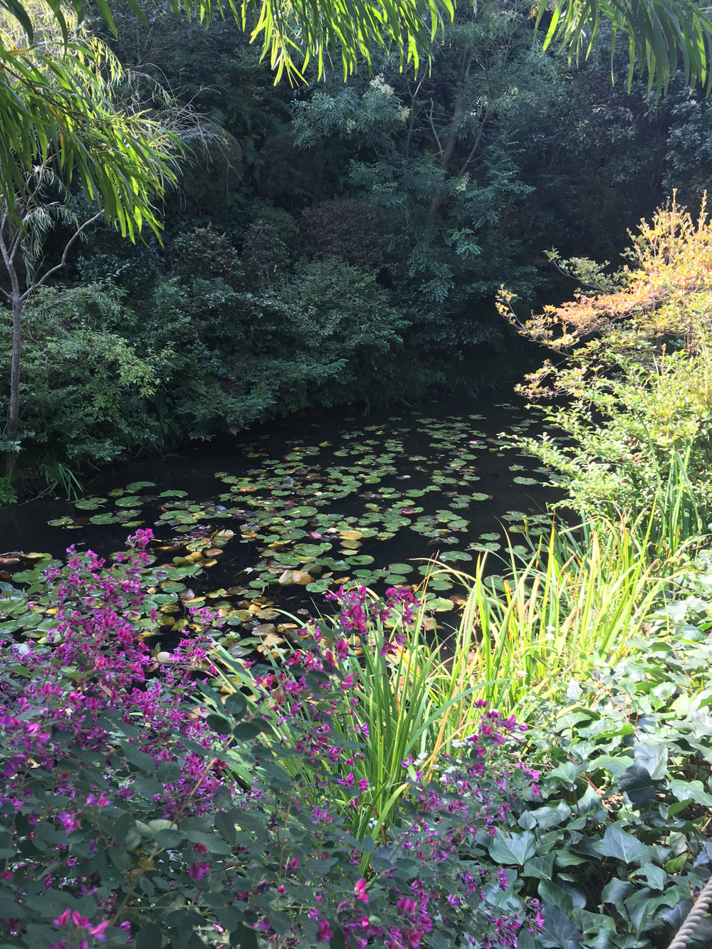 Garden inspired by Giverny