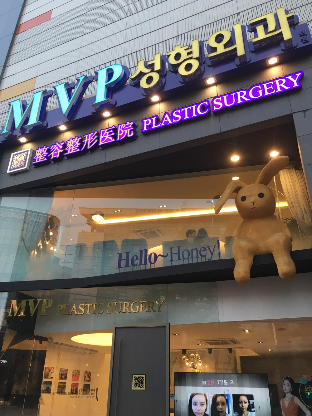 don't all plastic surgery clinics have a mascot?