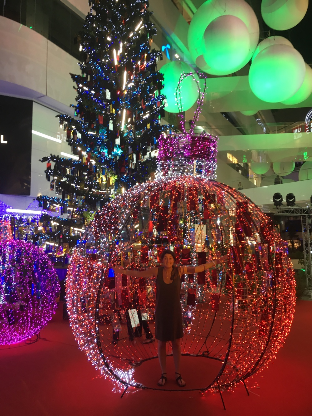 Inside the christmas light ball