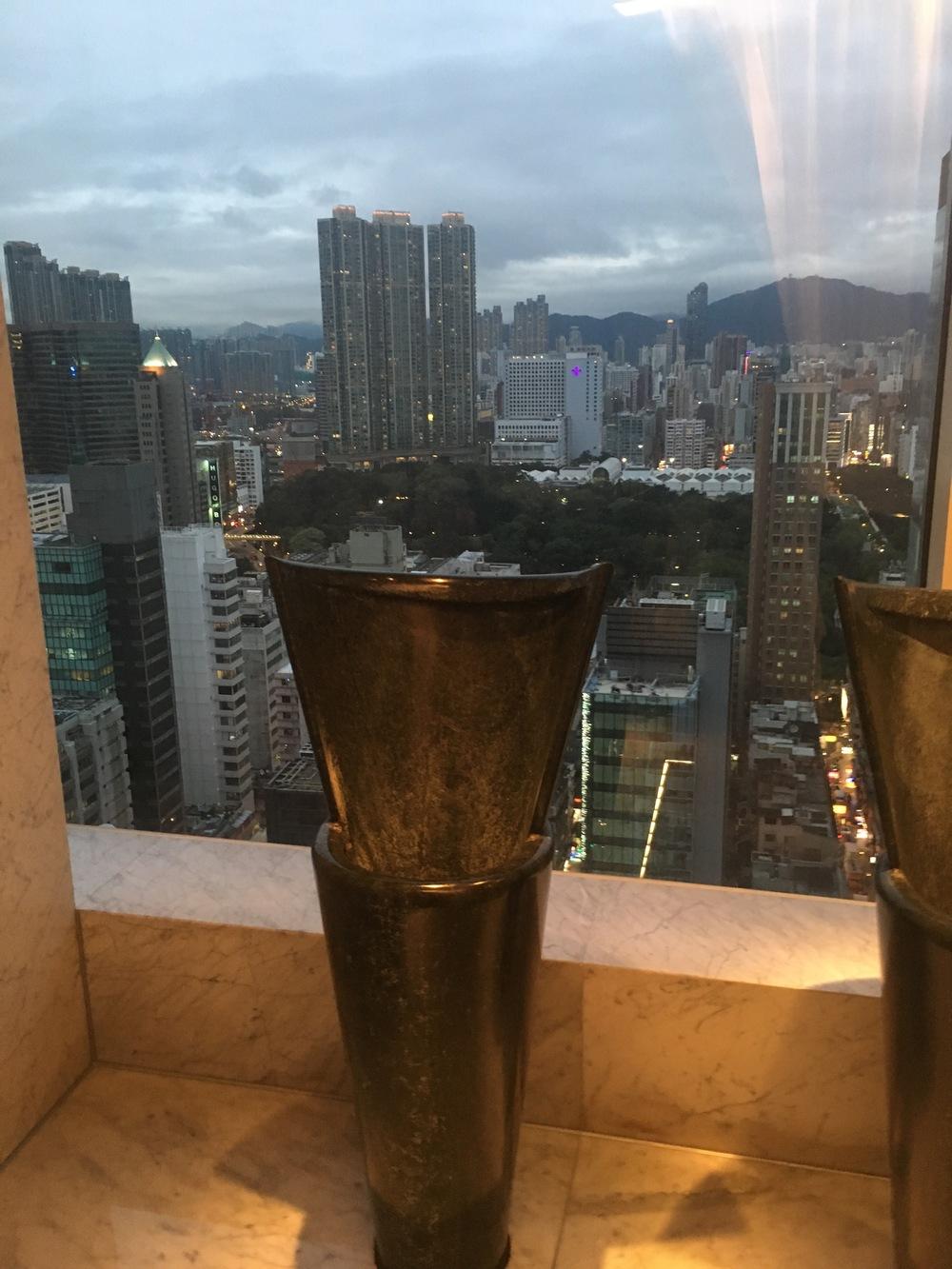 Urinal with views