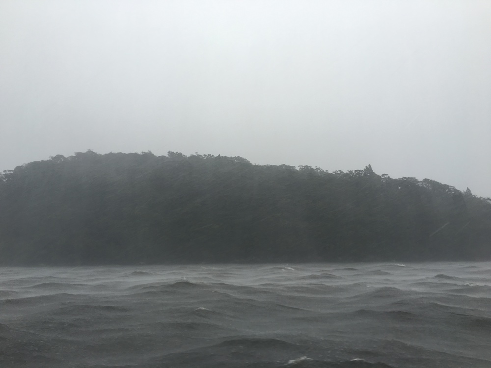 Rainy Doubtful Sound