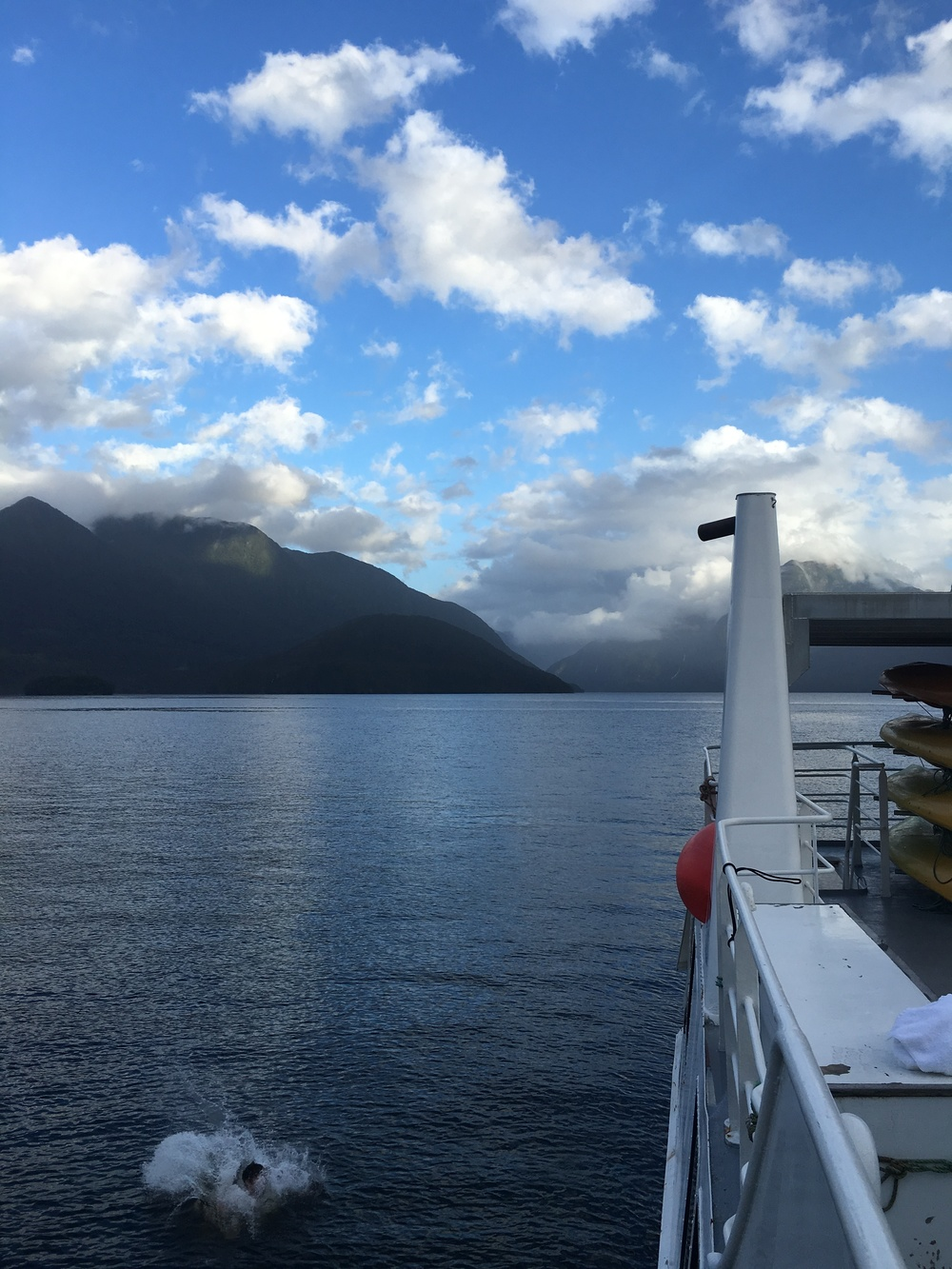 Icy plunge into Doubtful Sound