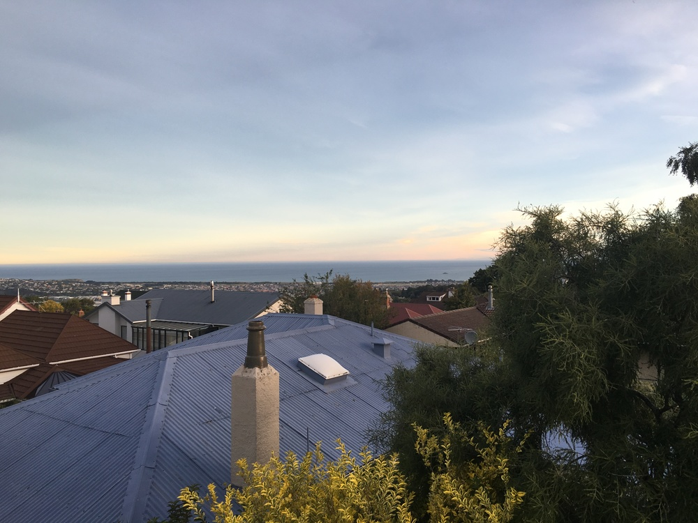View from A+A's house in Dunedin