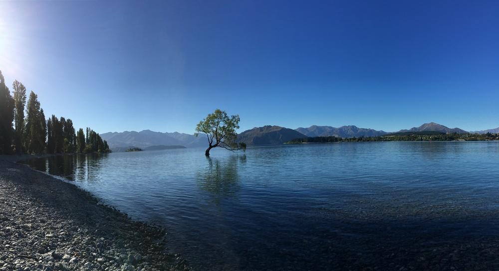 Queenstown + Wanaka, NZ