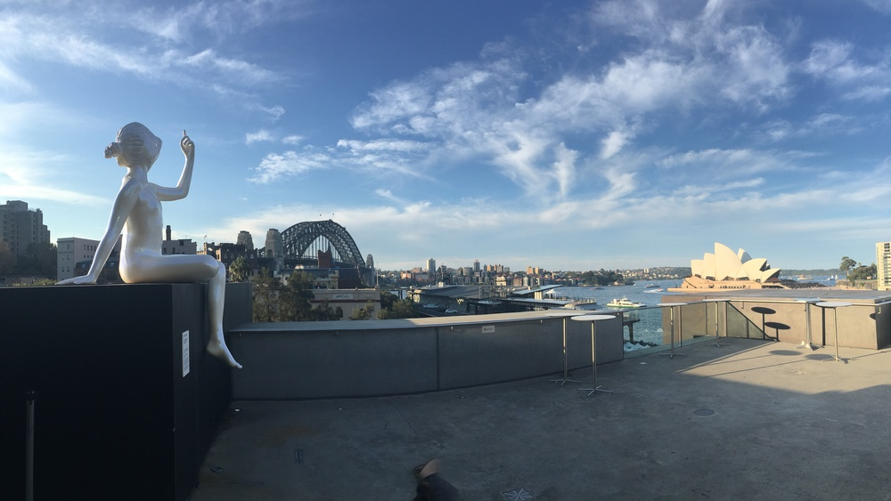 View from the Museum of Contemporary Art