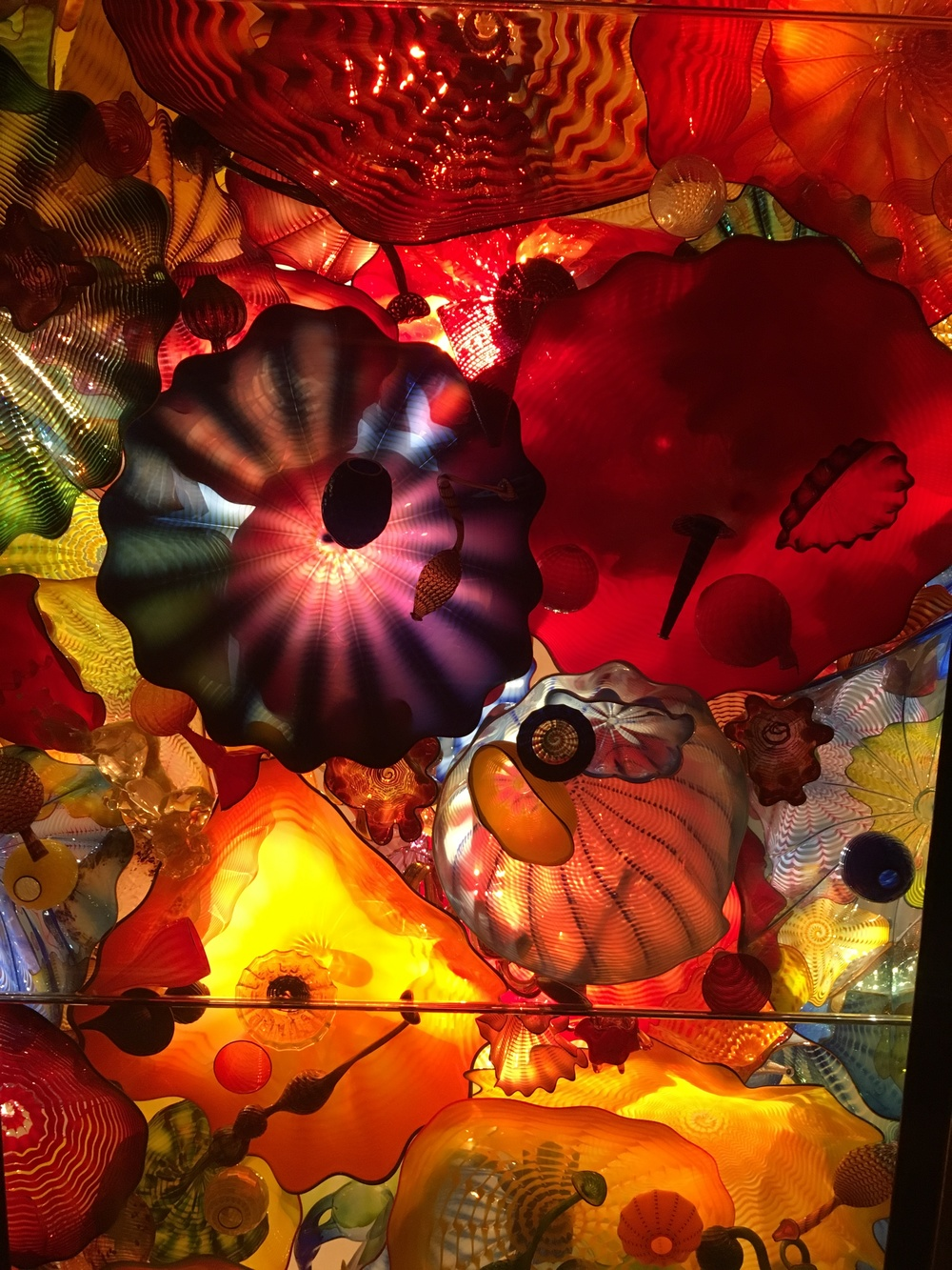 Chihuly!