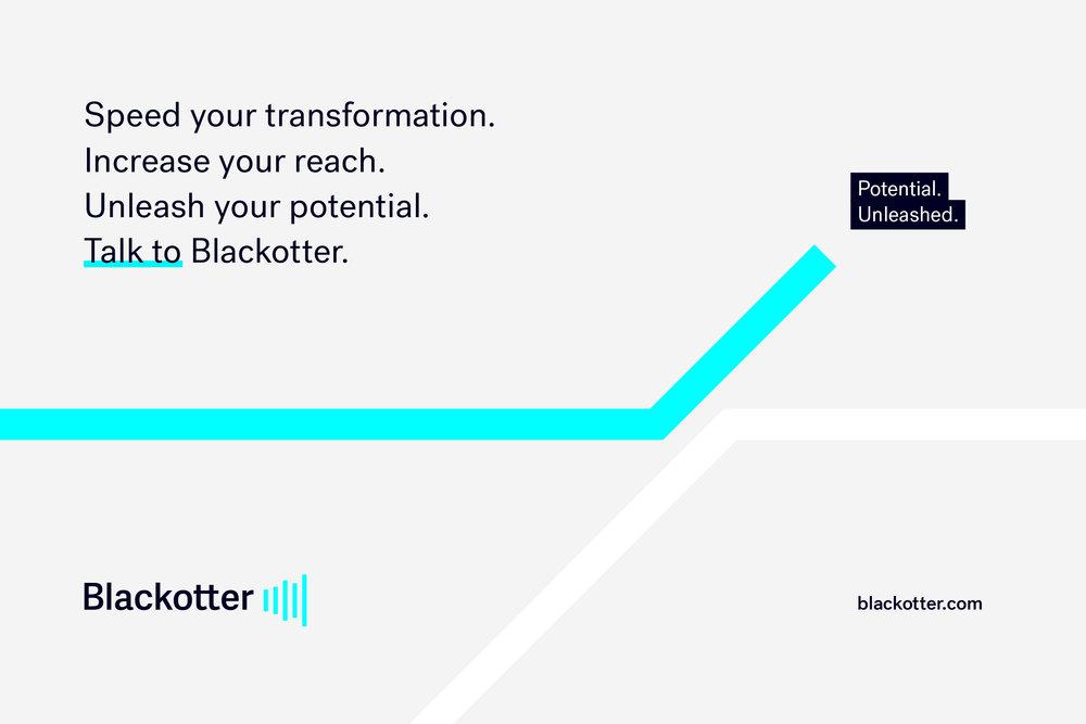 tandem-branding-agency-perth-blackotter-visual-identity