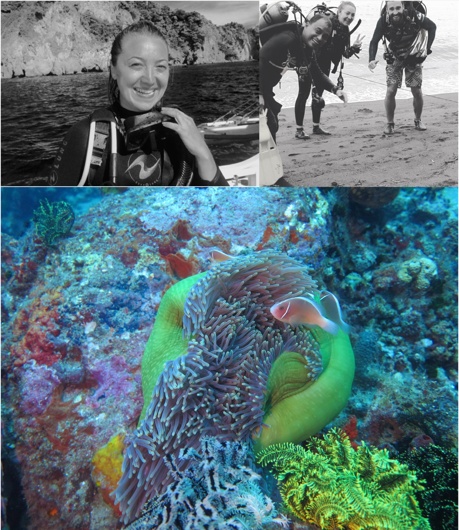 Photo on the top left was taken in Apo island, Philippines. Photo on right was taken in Dauin, Philippines during my rescue diver course.    The photo below was taken in Dauin, Philippines during some of the adventure dives we did.   Photo credit: Bernd Zomerdijk
