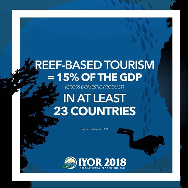 There are many reasons why the global population should aim to have a #sustainable use of #coral #reefs, and one of them is the #economic stability of many countries! . #GreenFinsIYOR2018 #IYOR2018 #SaveOurReefs #DiveForChange #sustainablediving #tourism #sustainabletourism