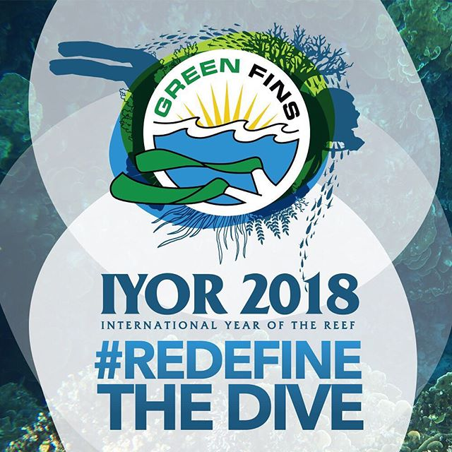 @green_fins assessment data gives us the information to identify the biggest risks posed to the #marine environment from the diving industry. The #GreenFinsIYOR2018 Campaign will be divided into 4 Action Points, ways in which the #diving community CAN make a change to #SaveOurReefs First of all: #RedefineTheDive! Learn how to be the most environmentally aware diver to have zero impact dives. #IYOR2018