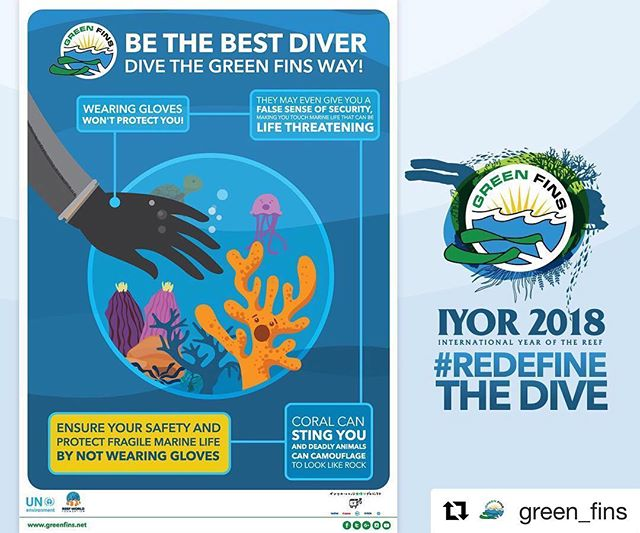 Have you been following the #greenfinsiyor2018 campaign?? #RedefineTheDive this #iyor2018 #Repost @green_fins with @get_repost ・・・ #Dive guides, do you find it difficult to ask your guests not to wear gloves? One of the newest Green Fins posters was created to help YOU! By sharing new information you are helping #RedefineTheDive of many #divers out there.  Download it now from the Green Fins website!