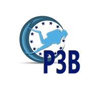 P3B.jpg