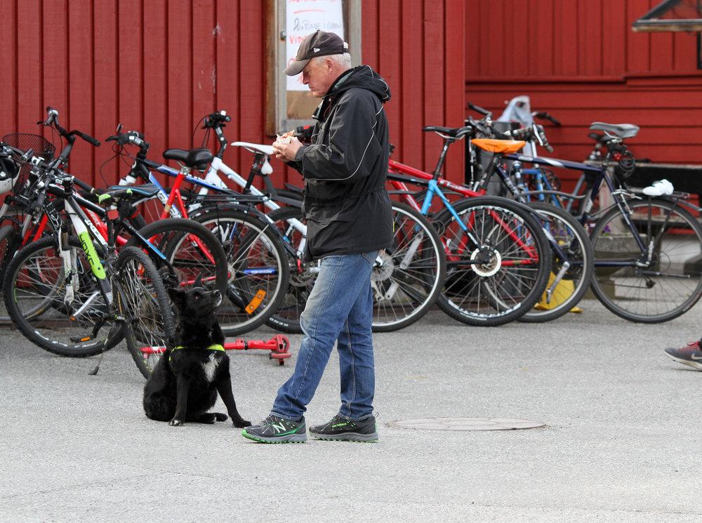 Vidar v Frigg Oslo   2016-04-23