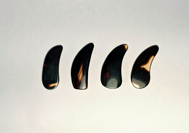 Four different thumb nail shapes. Not pictured: half moon type.