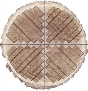 Quartersawn plank diagram from  HardWoodDistributors.org  Used under Fair Use Exemption of US Copyright law.