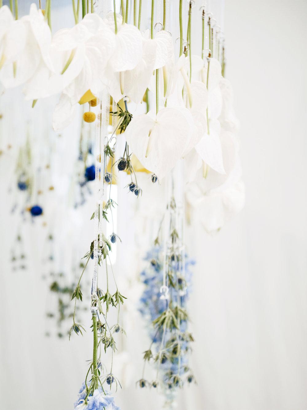 Blooming Tune_04.jpg