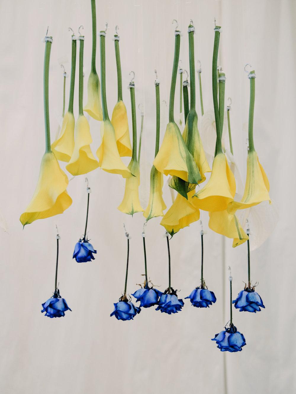 Blooming Tune_07.jpg