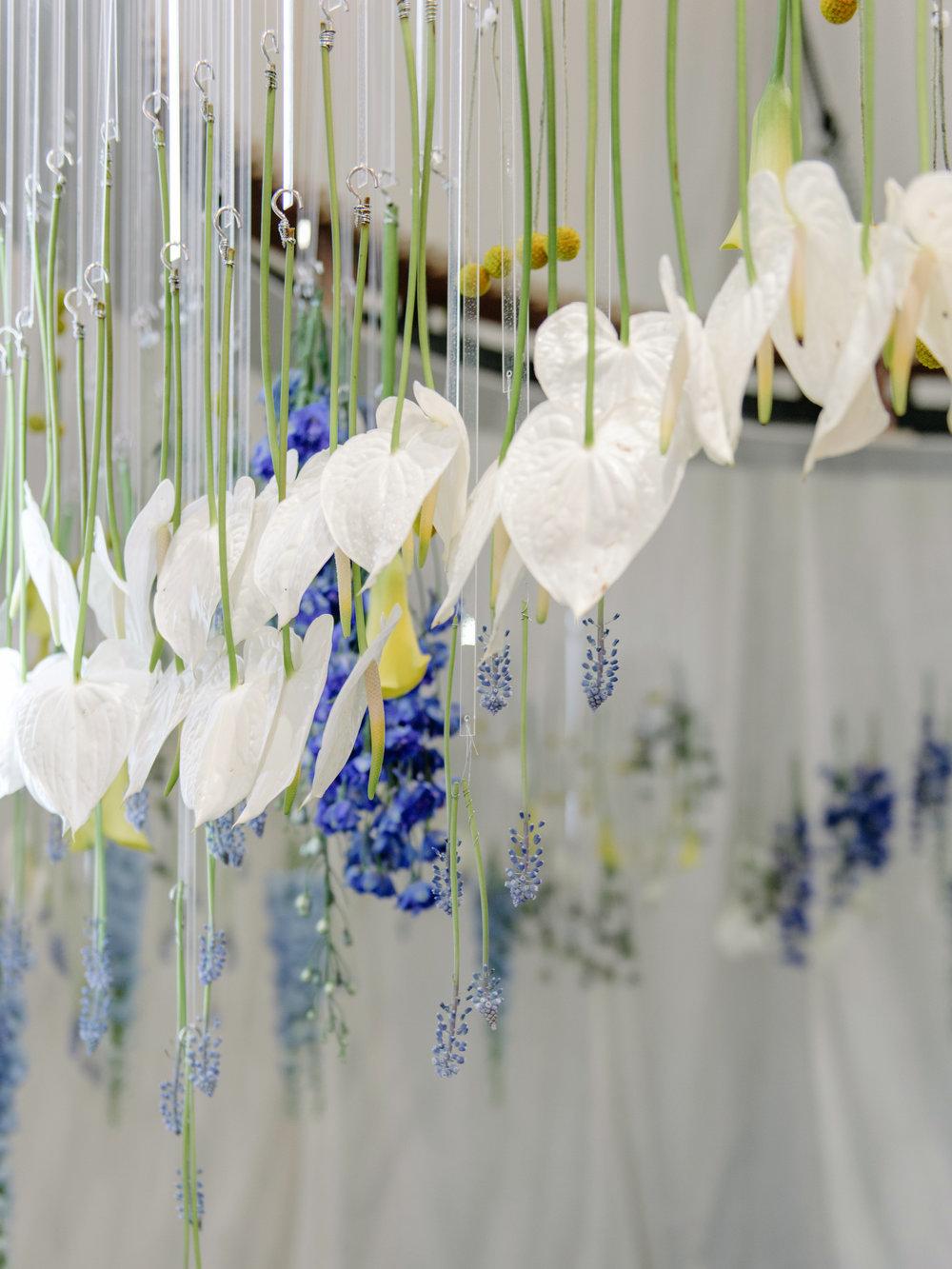 Blooming Tune_10.jpg