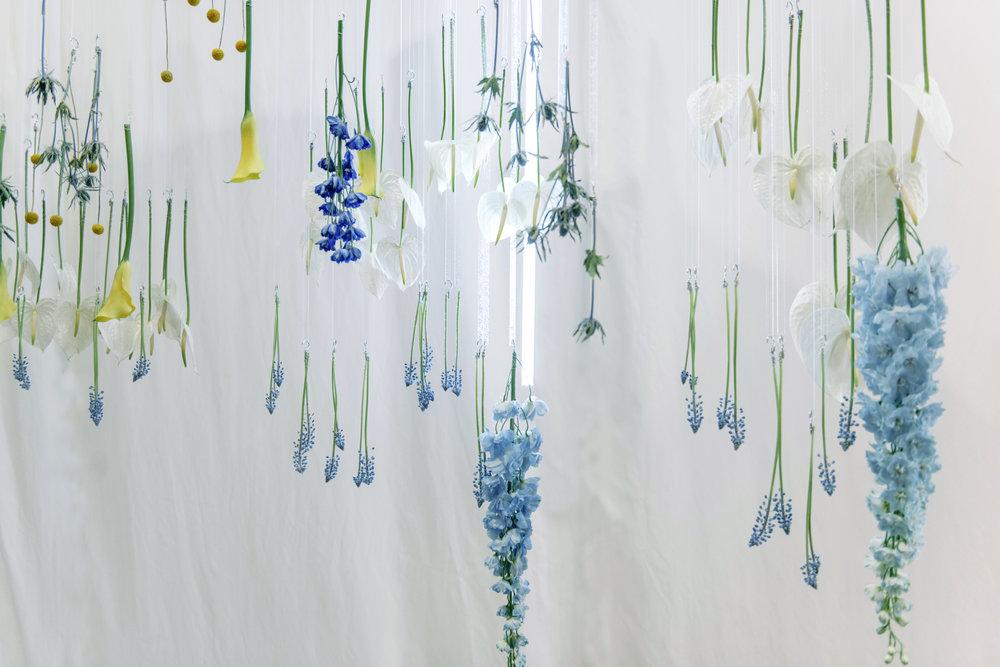 Blooming Tune_13.jpg