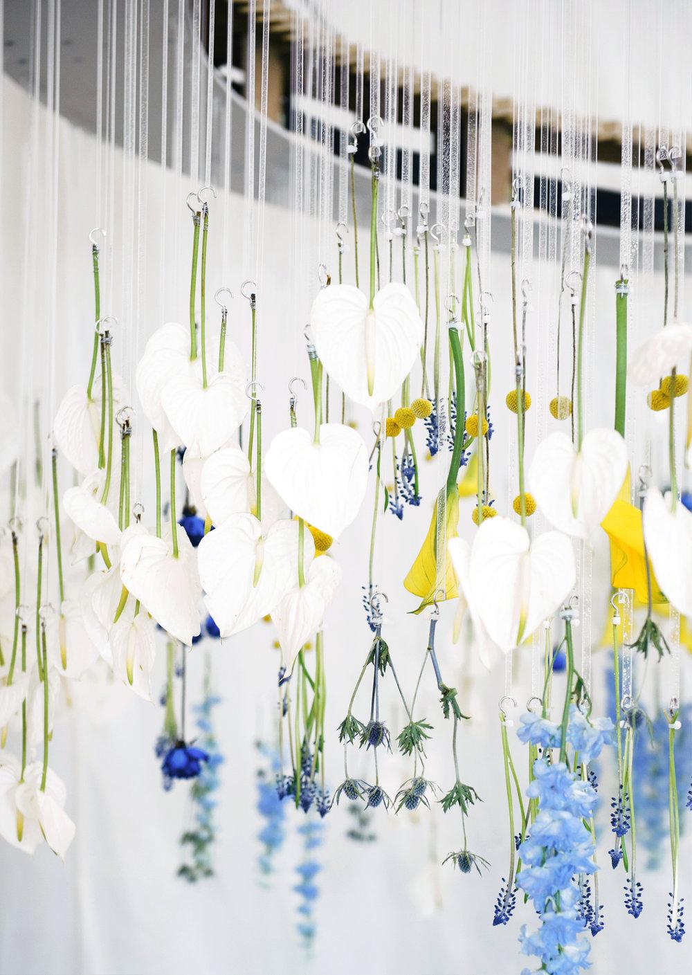 Blooming Tune_19.jpg