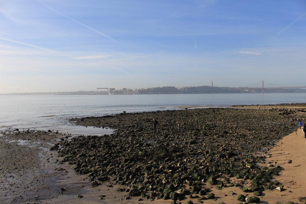 Riverfront view
