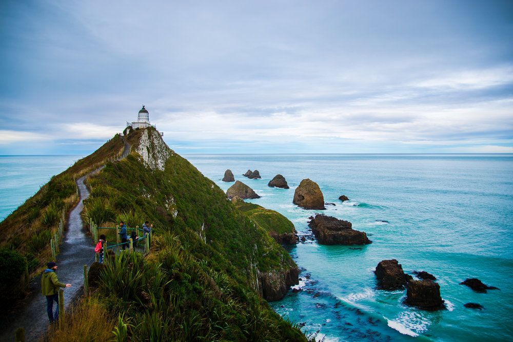 Catlins Nugget Point_3339.jpg