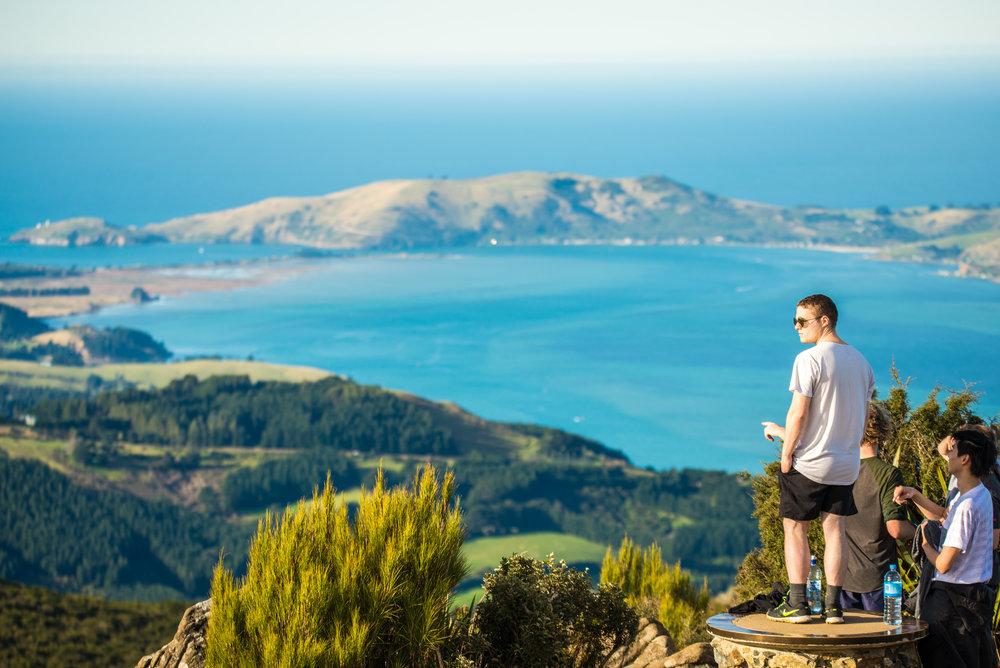 Dunedin-7485.jpg