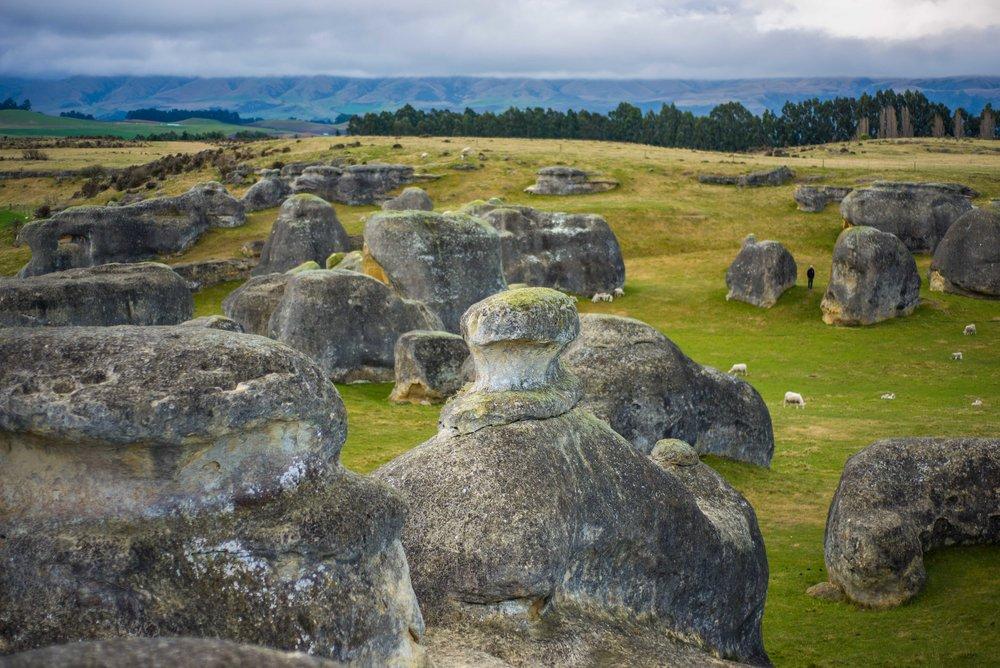 Elephant Rocks-8222.jpg