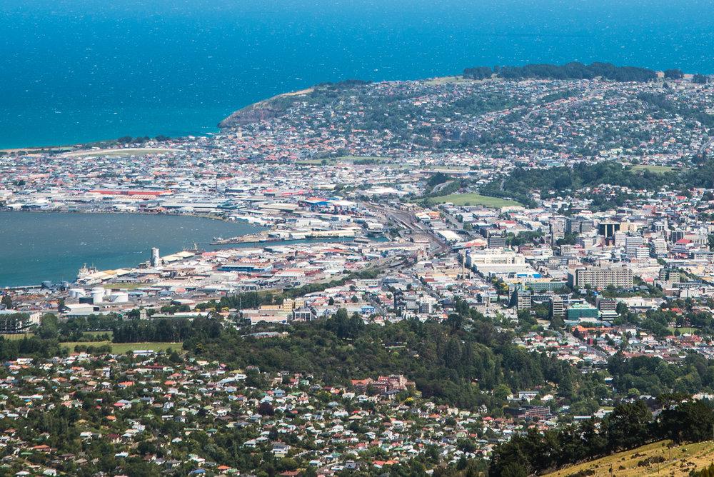 Dunedin City from Mt Cargill_0485.jpg