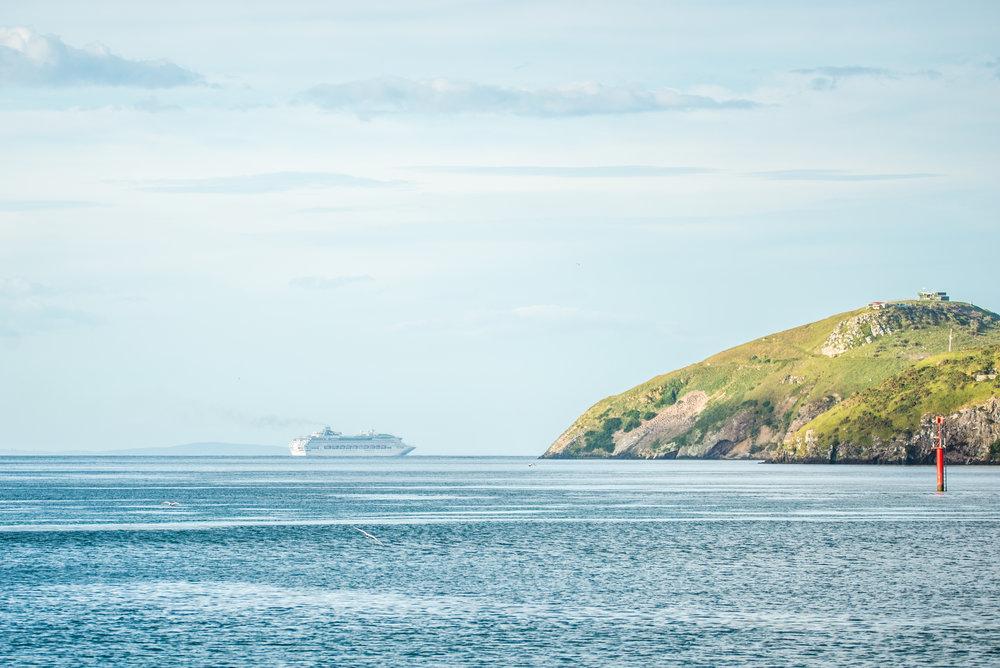 Taiaroa Head with Sea Princess-3742.jpg